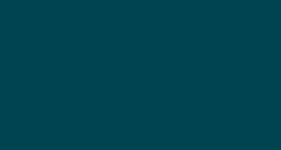 Logo - DIS Sensors